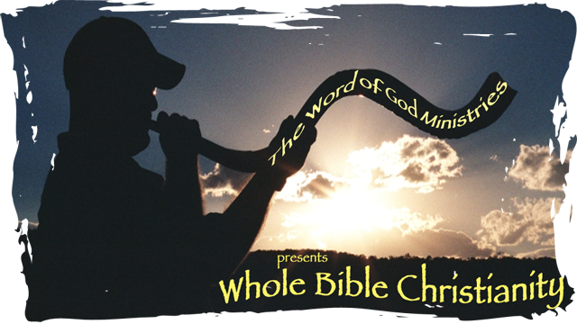 The Whole Picture: Reintroducing Whole Bible Christianity